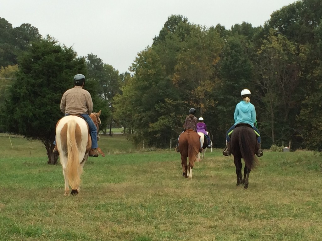 Trail Riding Charlotte Nc White Rose Equestrian Center